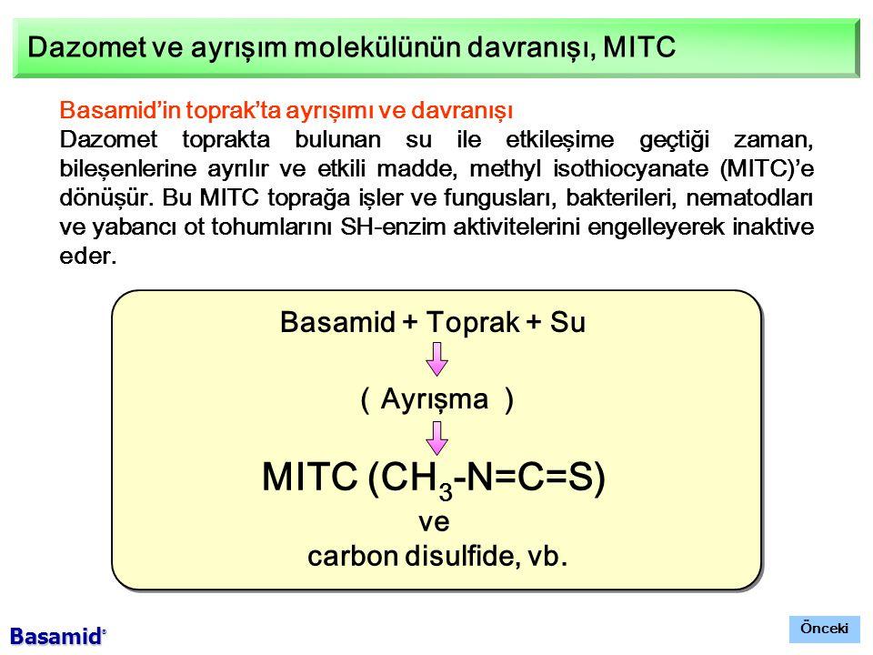 MITC (CH3-N=C=S) Dazomet ve ayrışım molekülünün davranışı, MITC