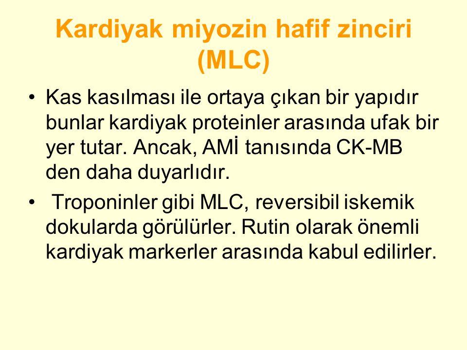 Kardiyak miyozin hafif zinciri (MLC)