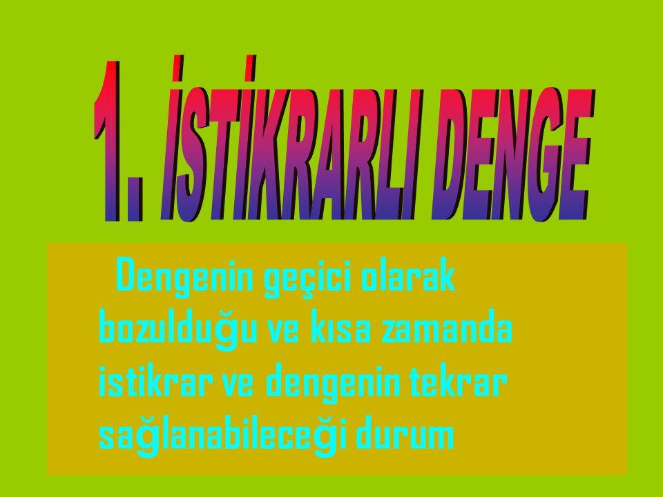 İSTİKRARLI DENGE 1.