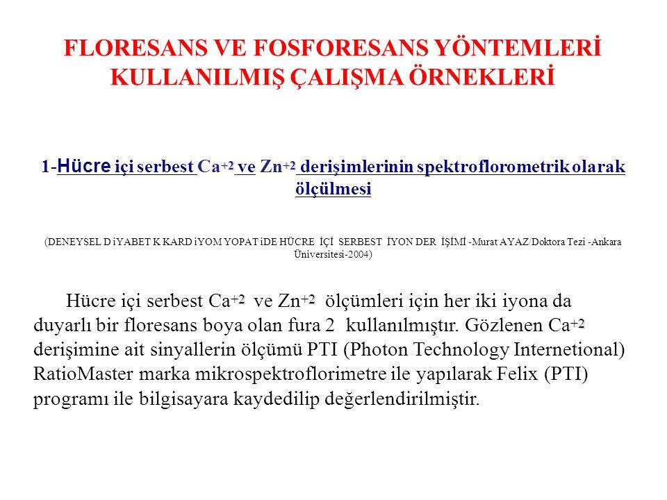 FLORESANS VE FOSFORESANS YÖNTEMLERİ KULLANILMIŞ ÇALIŞMA ÖRNEKLERİ