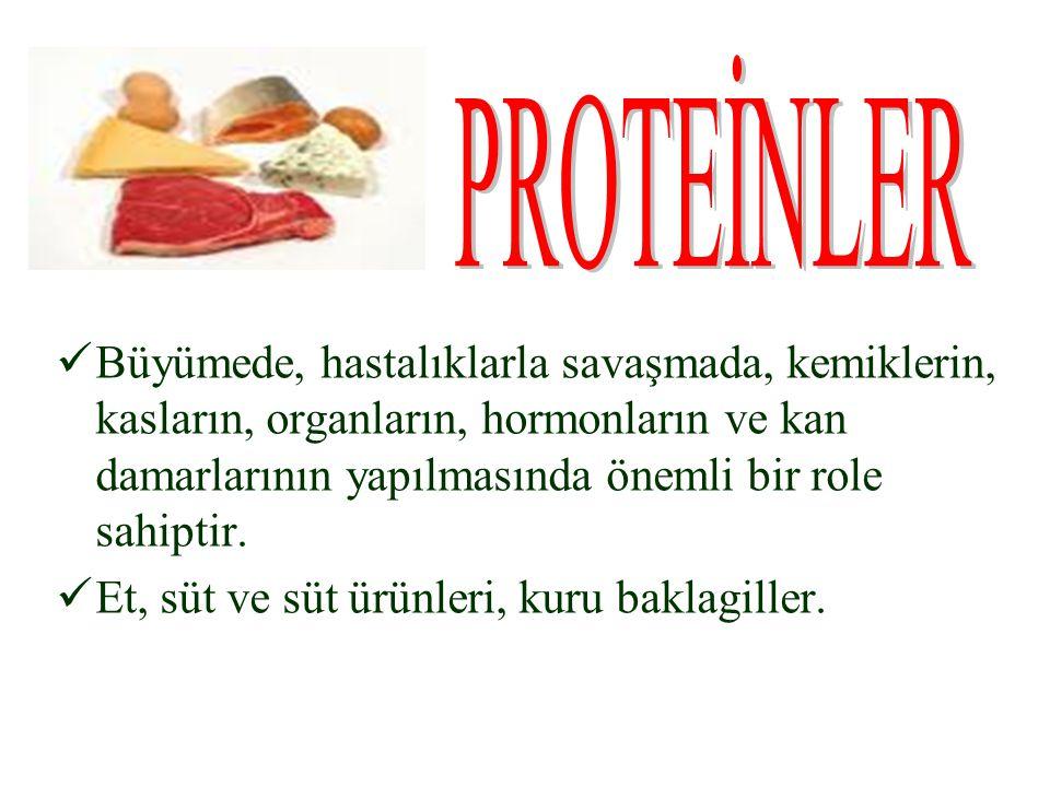 PROTEİNLER