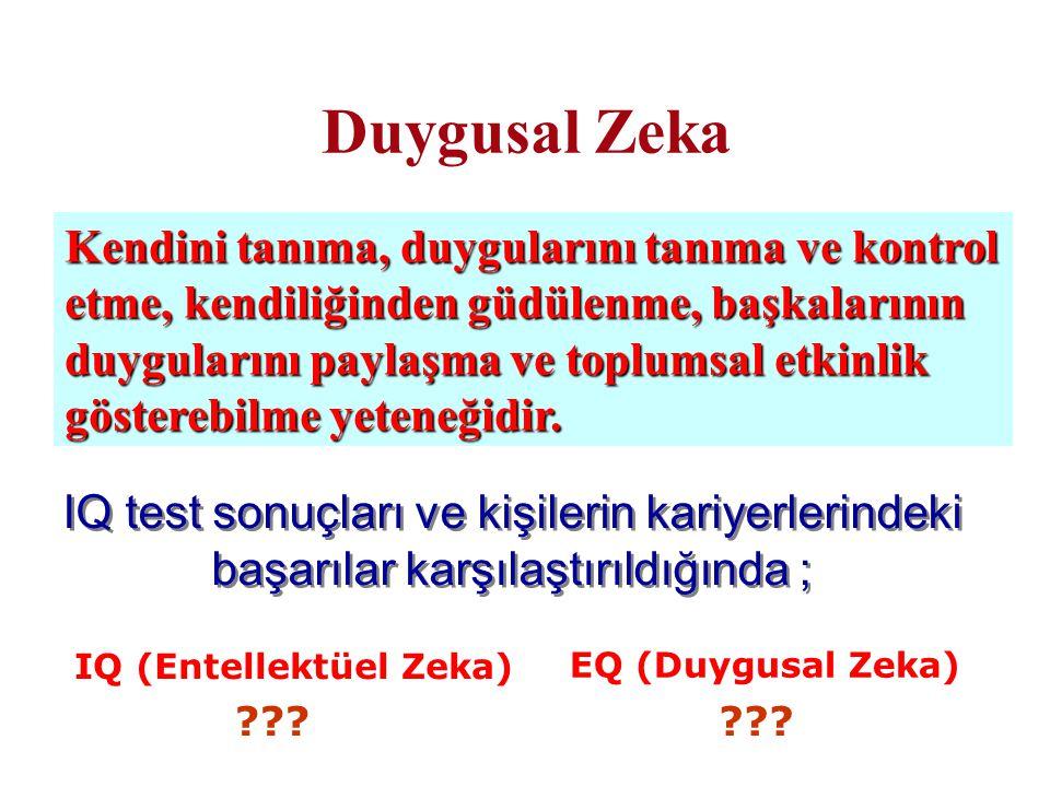 IQ (Entellektüel Zeka)