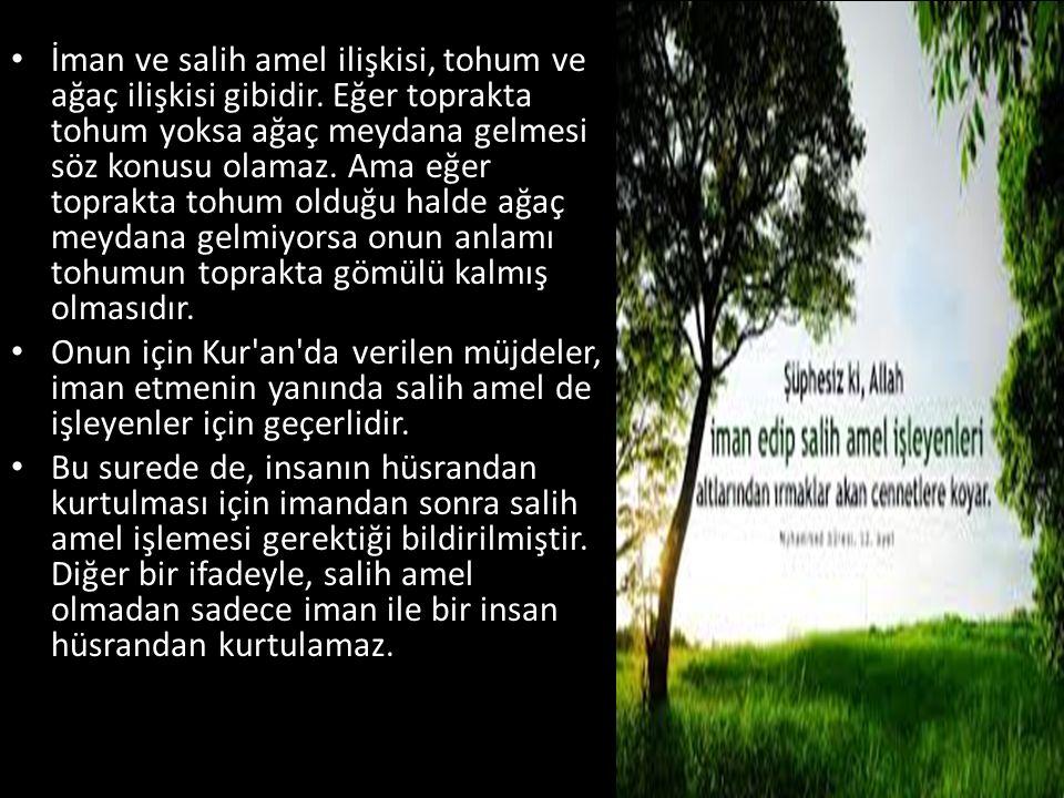İman ve salih amel ilişkisi, tohum ve ağaç ilişkisi gibidir