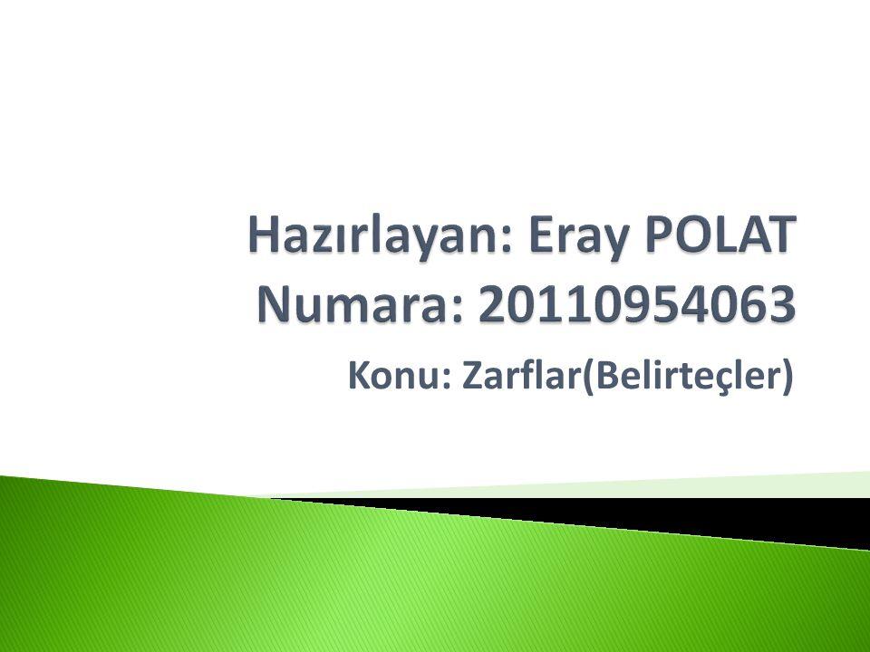 Hazırlayan: Eray POLAT Numara: 20110954063