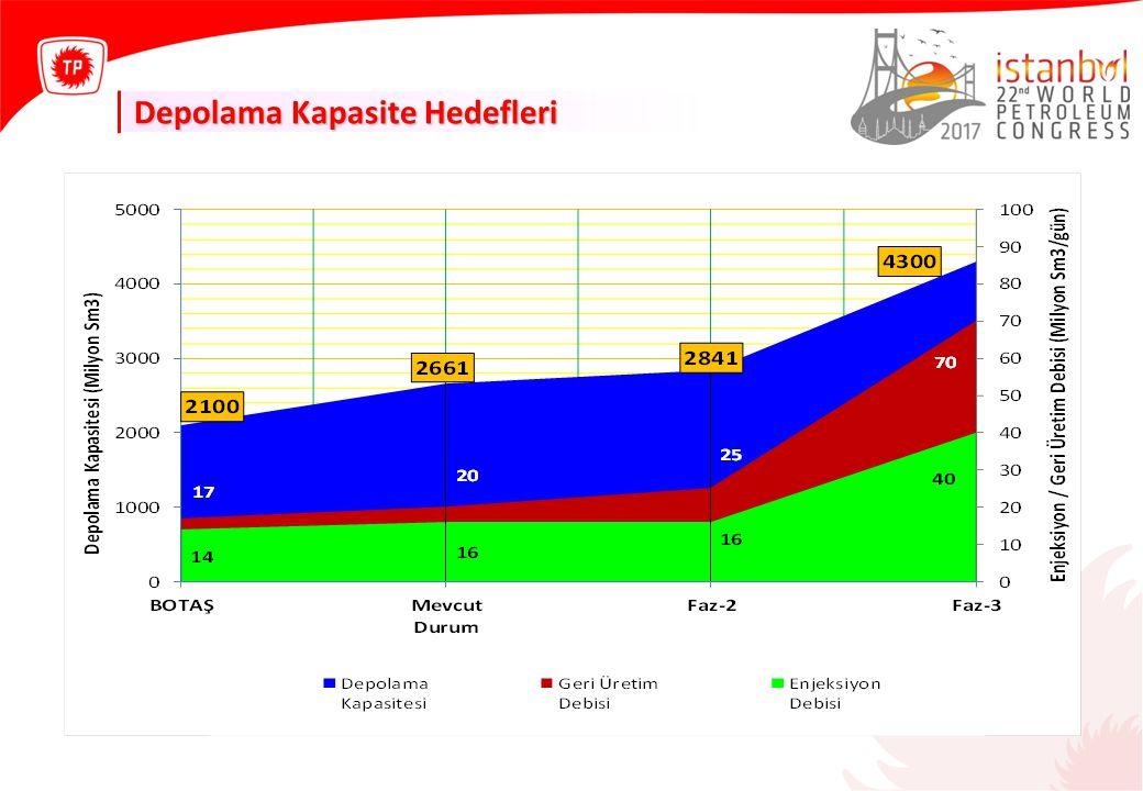 Depolama Kapasite Hedefleri