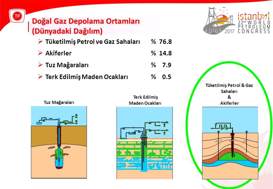 Tüketilmiş Petrol & Gaz Sahaları