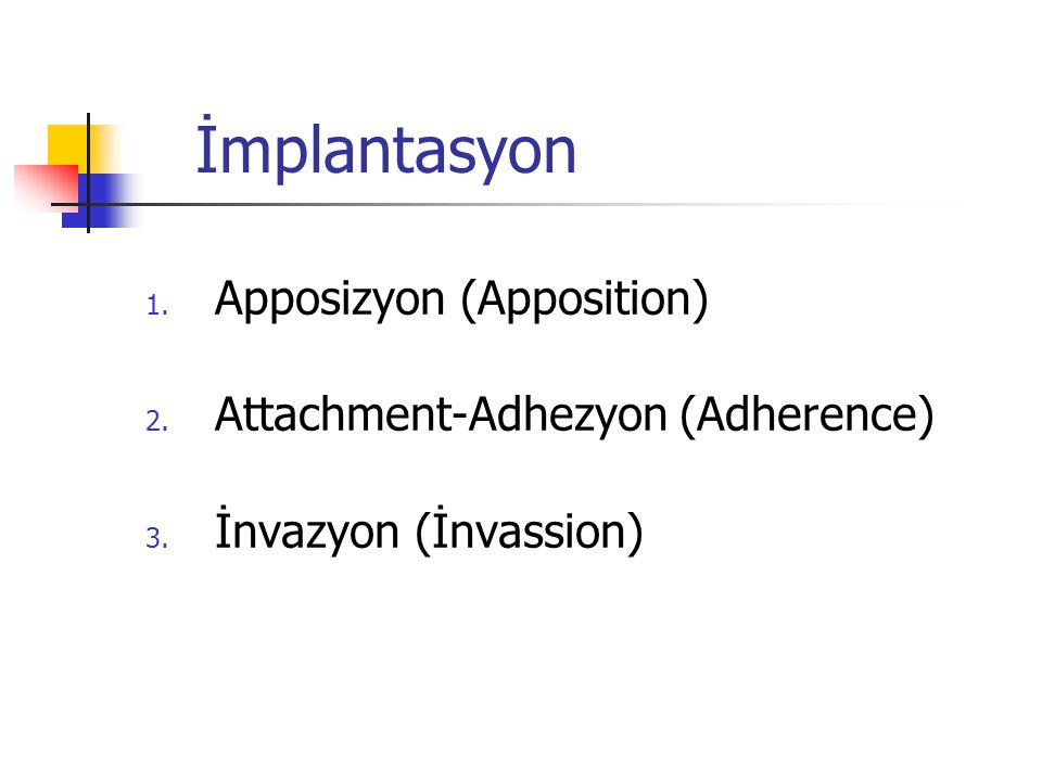İmplantasyon Apposizyon (Apposition) Attachment-Adhezyon (Adherence)