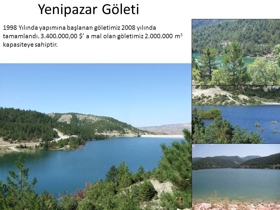 Yenipazar Göleti
