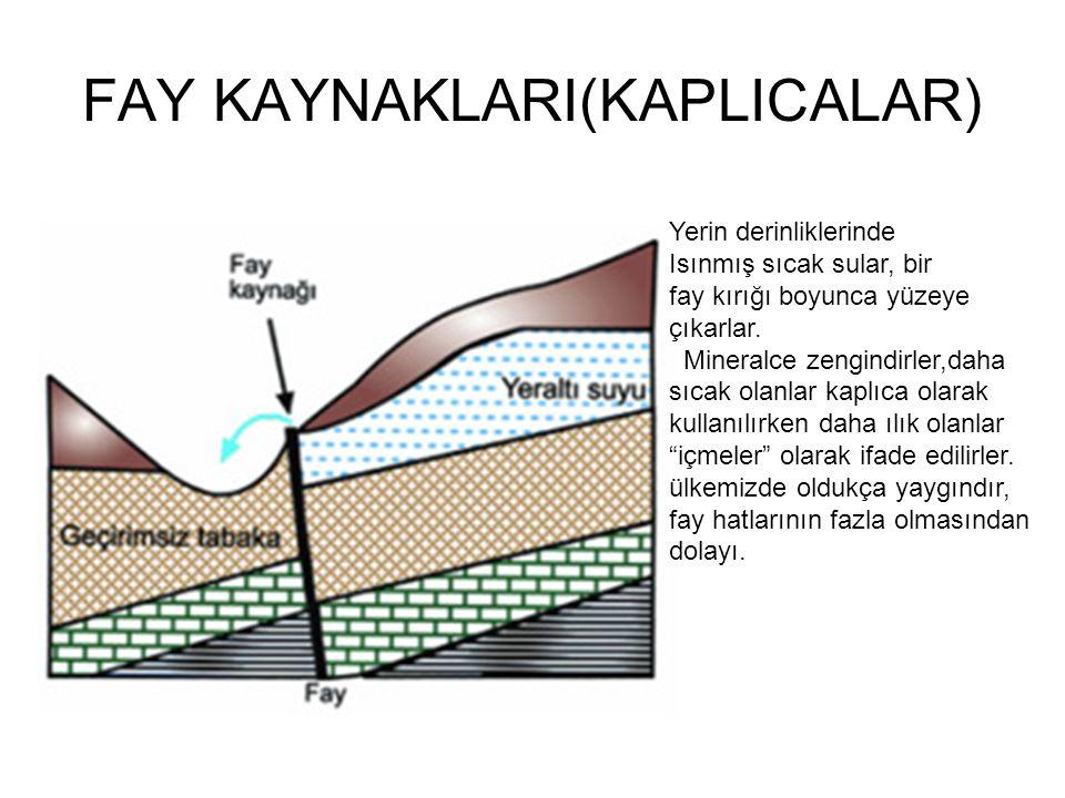 FAY KAYNAKLARI(KAPLICALAR)
