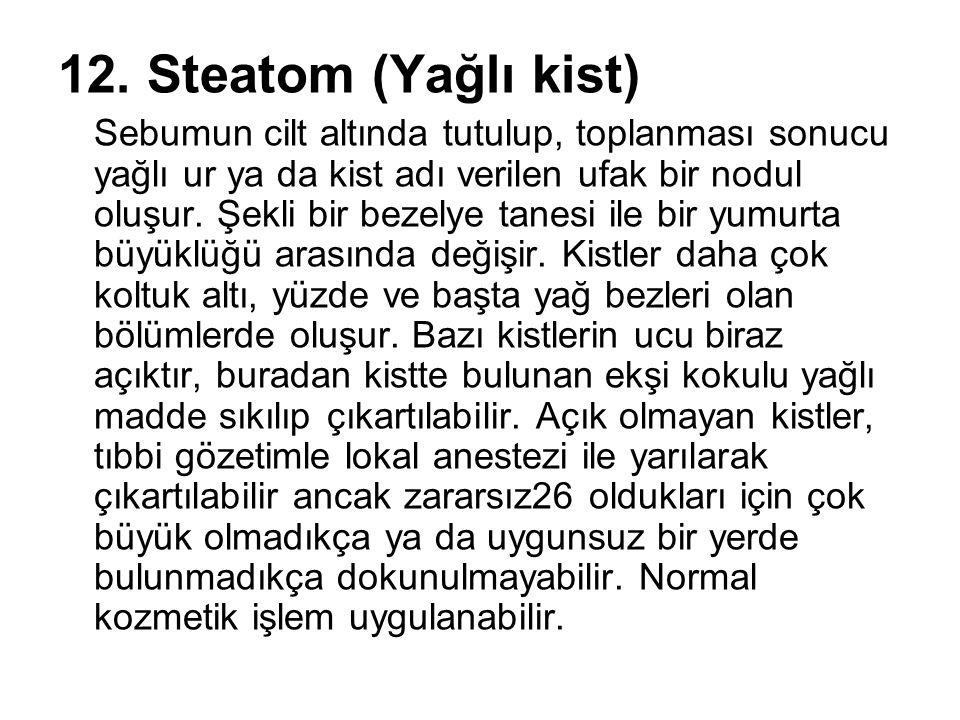 12. Steatom (Yağlı kist)