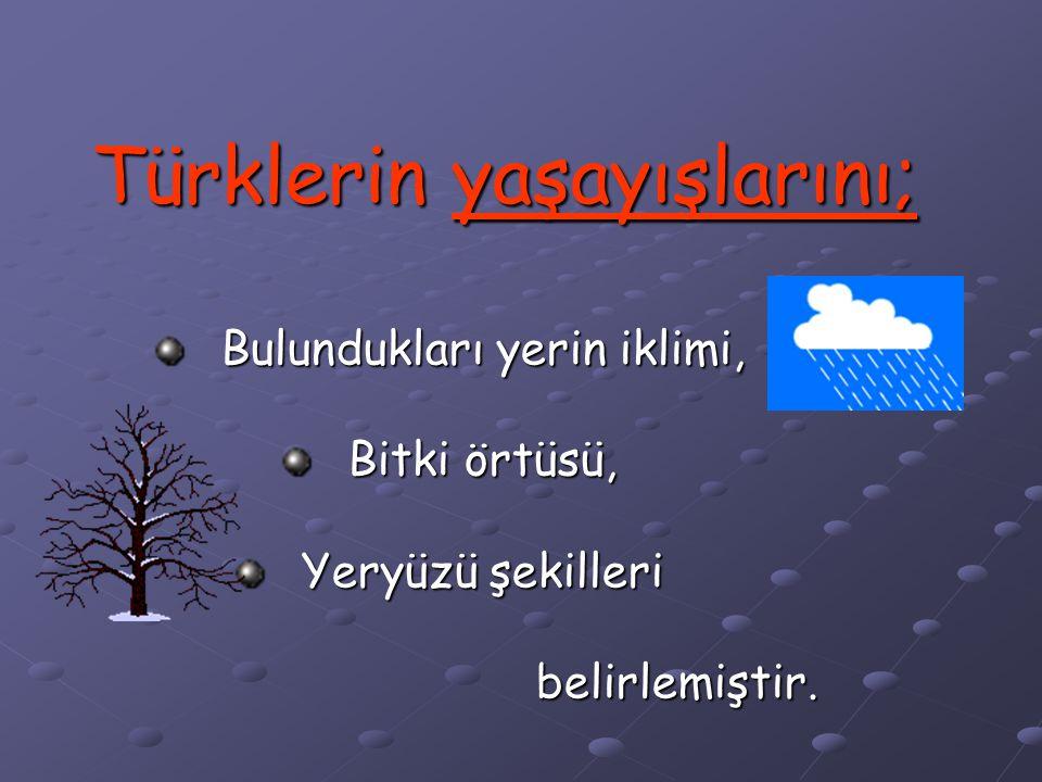 Türklerin yaşayışlarını;