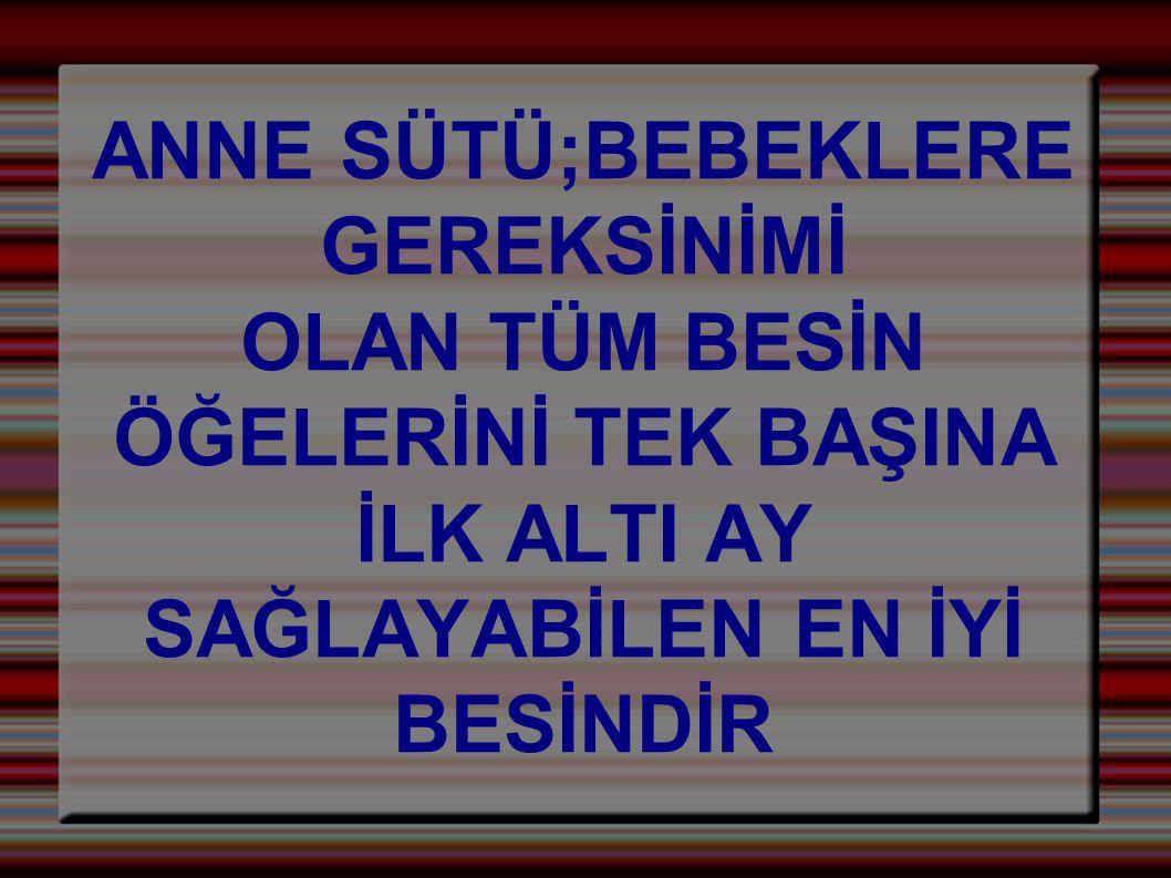 ANNE SÜTÜ;BEBEKLERE GEREKSİNİMİ.