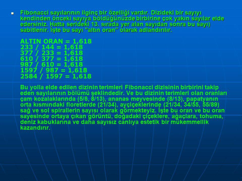Fibonacci sayılarının ilginç bir özelliği vardır