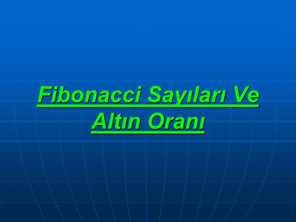 Fibonacci Sayıları Ve Altın Oranı