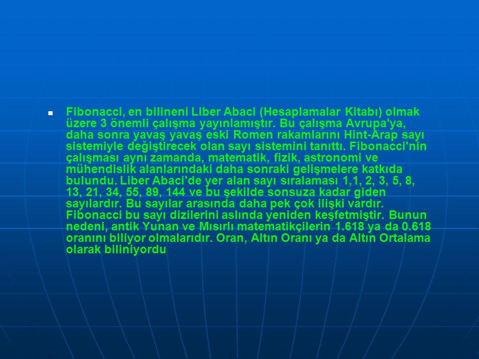 Fibonacci, en bilineni Liber Abaci (Hesaplamalar Kitabı) olmak üzere 3 önemli çalışma yayınlamıştır.