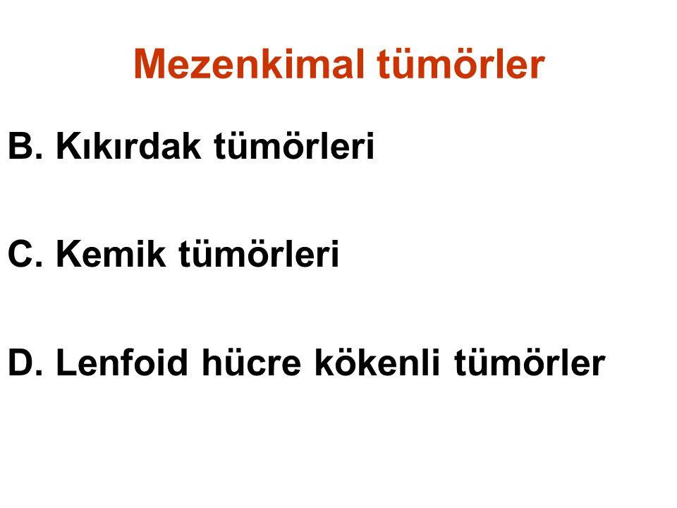 Mezenkimal tümörler B. Kıkırdak tümörleri C. Kemik tümörleri