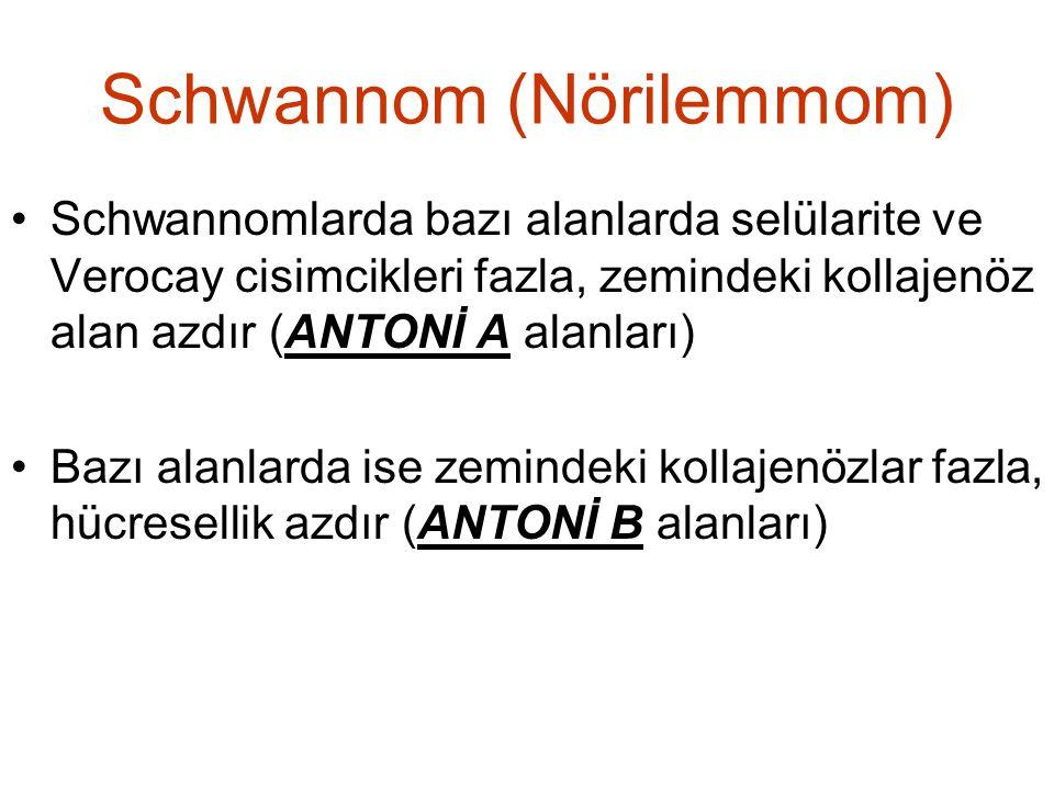 Schwannom (Nörilemmom)