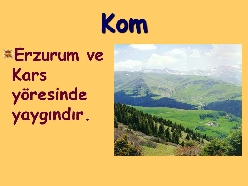 Kom Erzurum ve Kars yöresinde yaygındır.