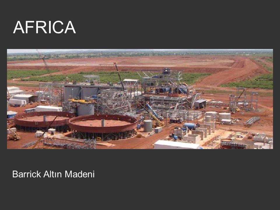 AFRICA Barrick Altın Madeni