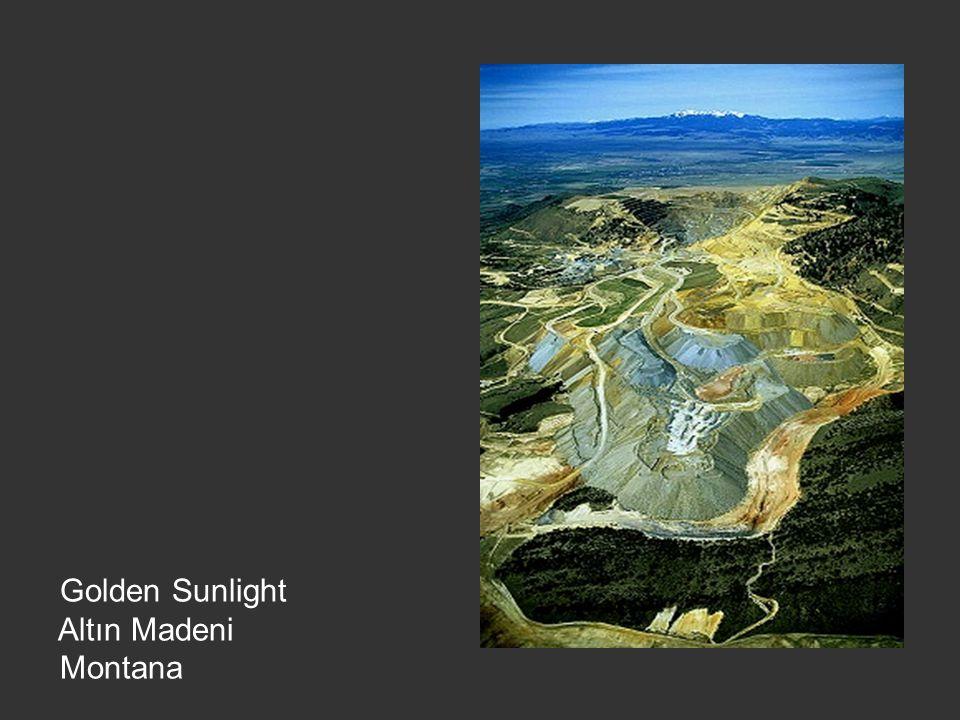 Golden Sunlight Altın Madeni Montana