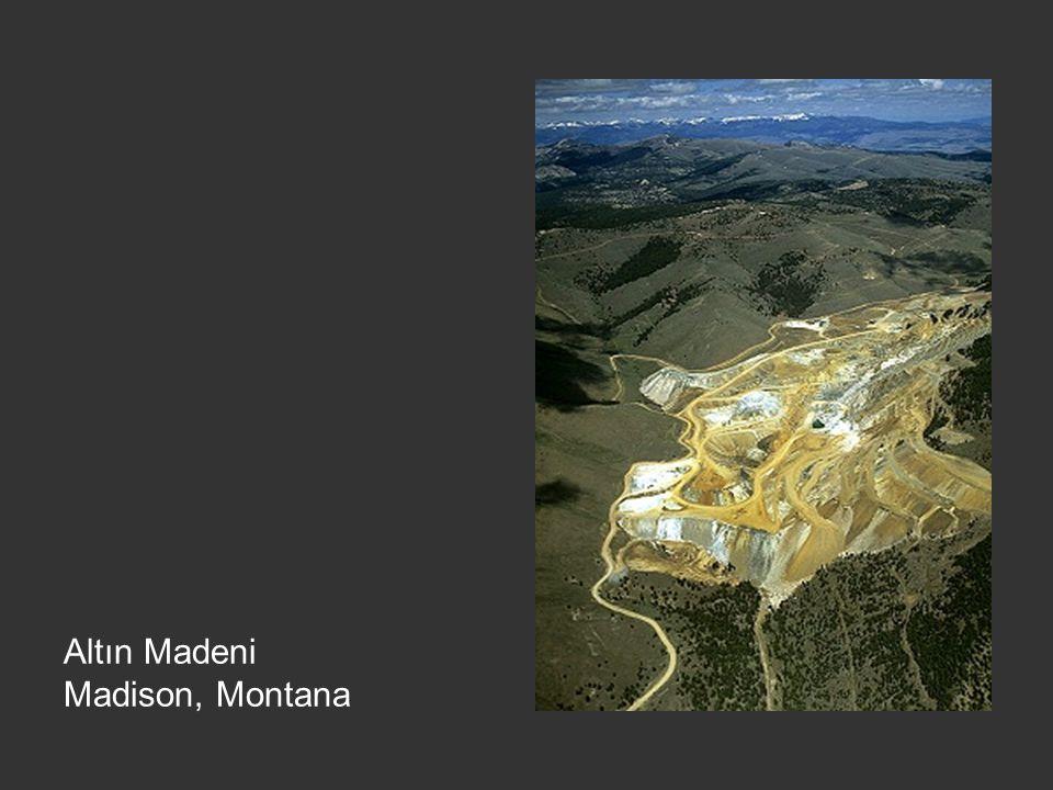 Altın Madeni Madison, Montana