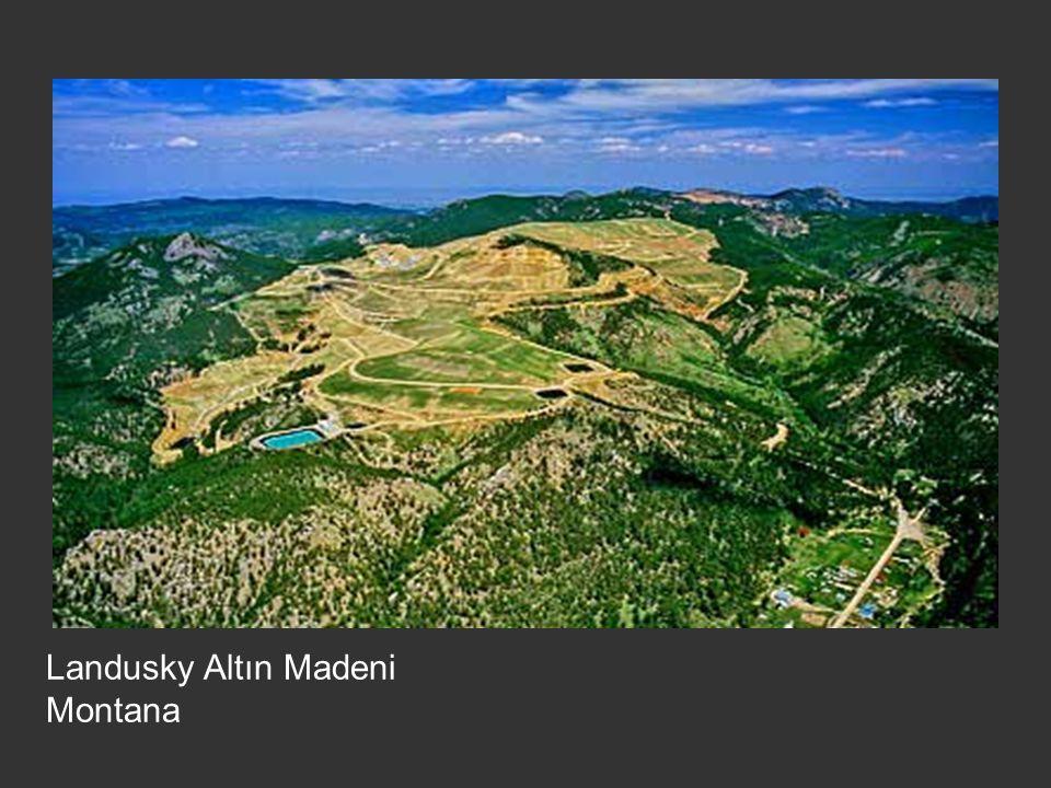 Landusky Altın Madeni Montana
