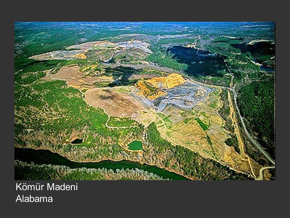Kömür Madeni Alabama