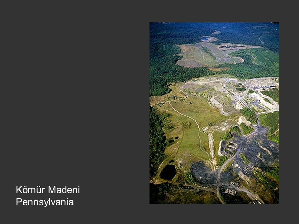 Kömür Madeni Pennsylvania