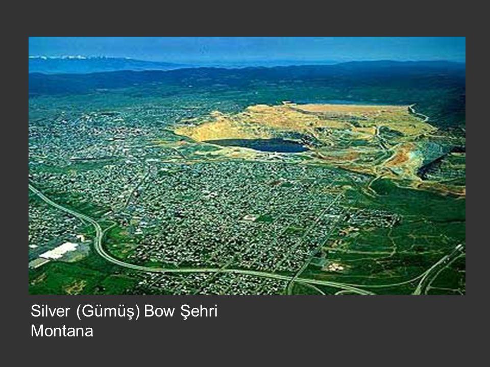 Silver (Gümüş) Bow Şehri Montana