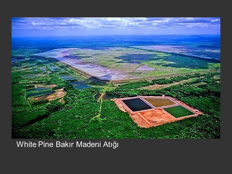 White Pine Bakır Madeni Atığı