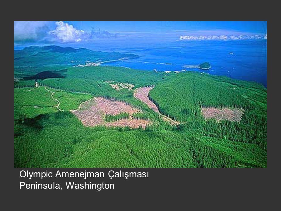 Olympic Amenejman Çalışması Peninsula, Washington