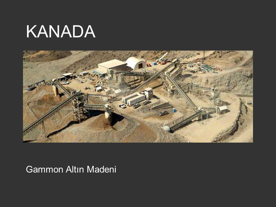 KANADA Gammon Altın Madeni
