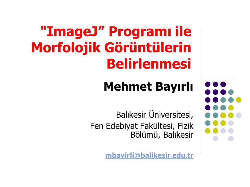 ImageJ Programı ile Morfolojik Görüntülerin Belirlenmesi
