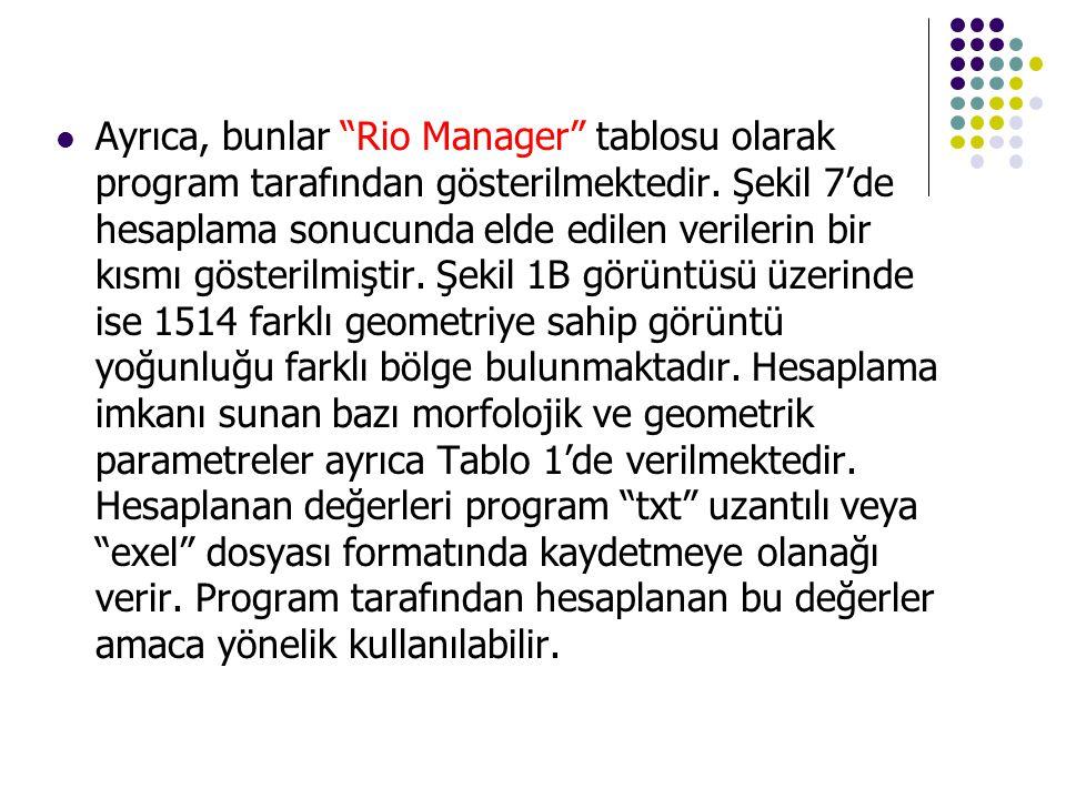 Ayrıca, bunlar Rio Manager tablosu olarak program tarafından gösterilmektedir.