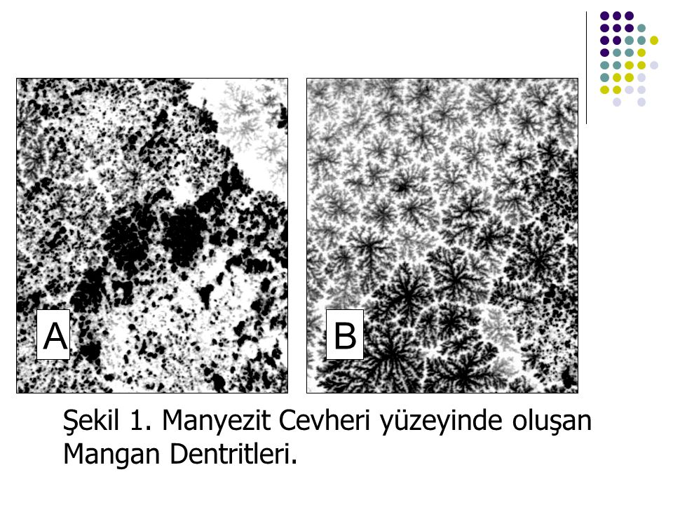 A B Şekil 1. Manyezit Cevheri yüzeyinde oluşan Mangan Dentritleri.