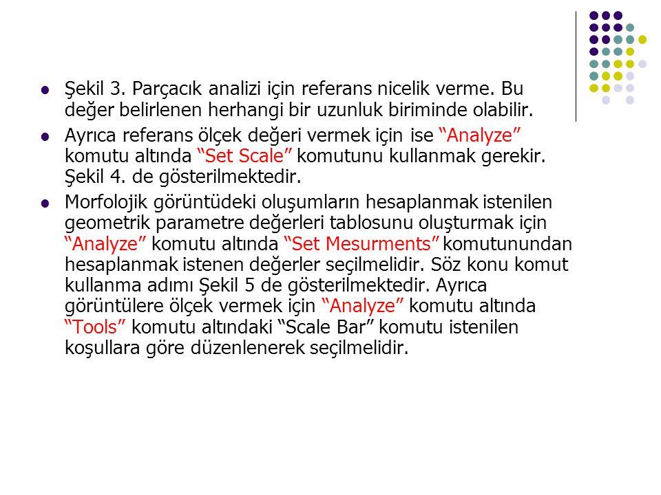 Şekil 3. Parçacık analizi için referans nicelik verme