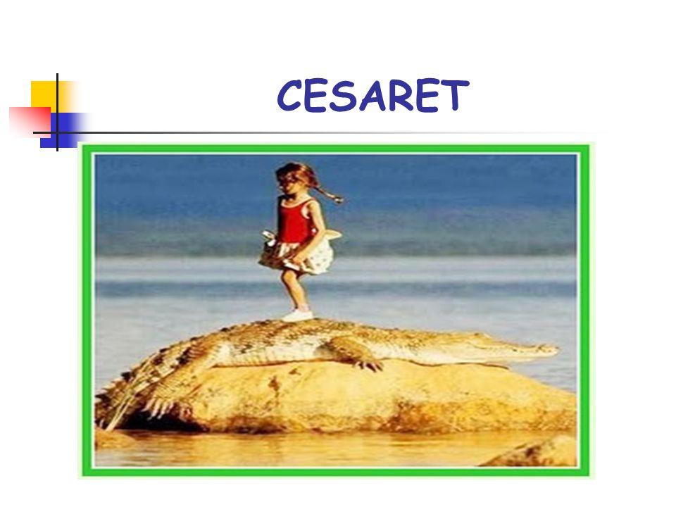 CESARET DEĞİŞTİREBİLECEĞİNİZ DURUMLARI değiştirebilmek için cesaret