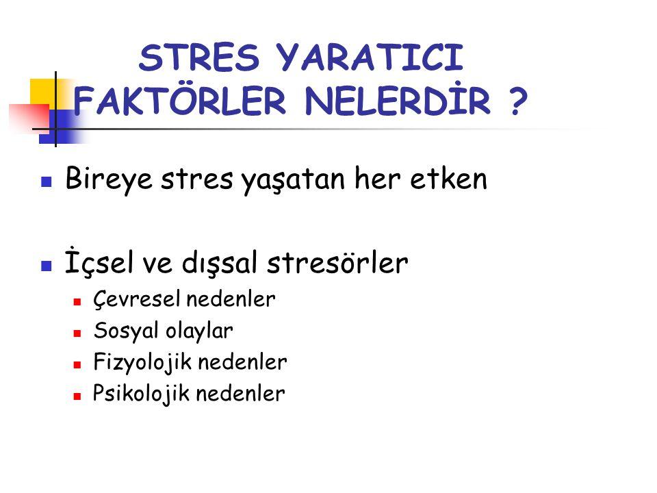 STRES YARATICI FAKTÖRLER NELERDİR