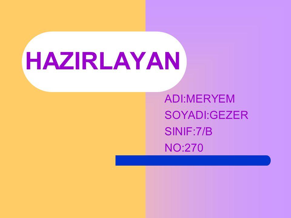 ADI:MERYEM SOYADI:GEZER SINIF:7/B NO:270