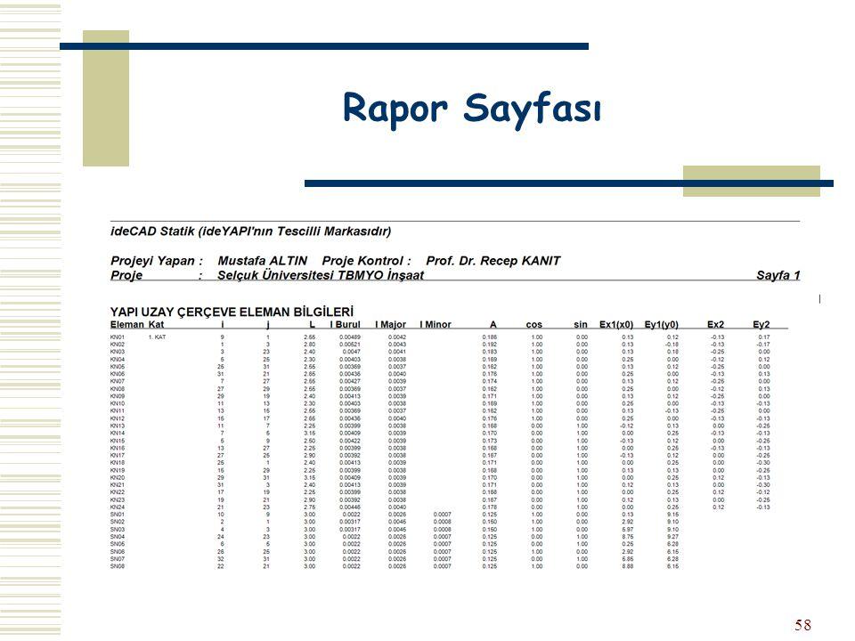 Rapor Sayfası