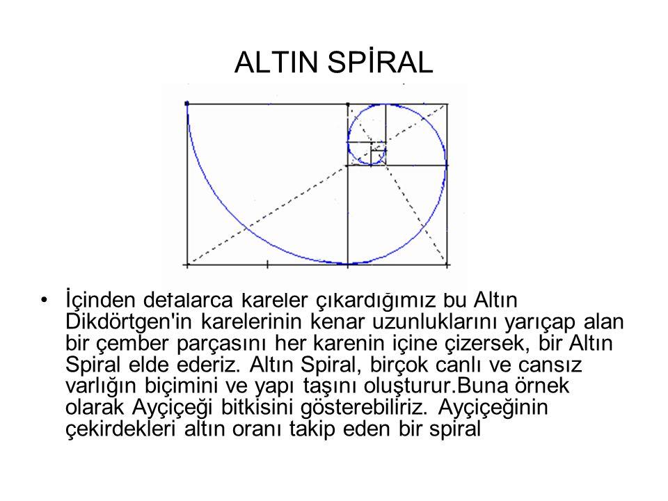 ALTIN SPİRAL