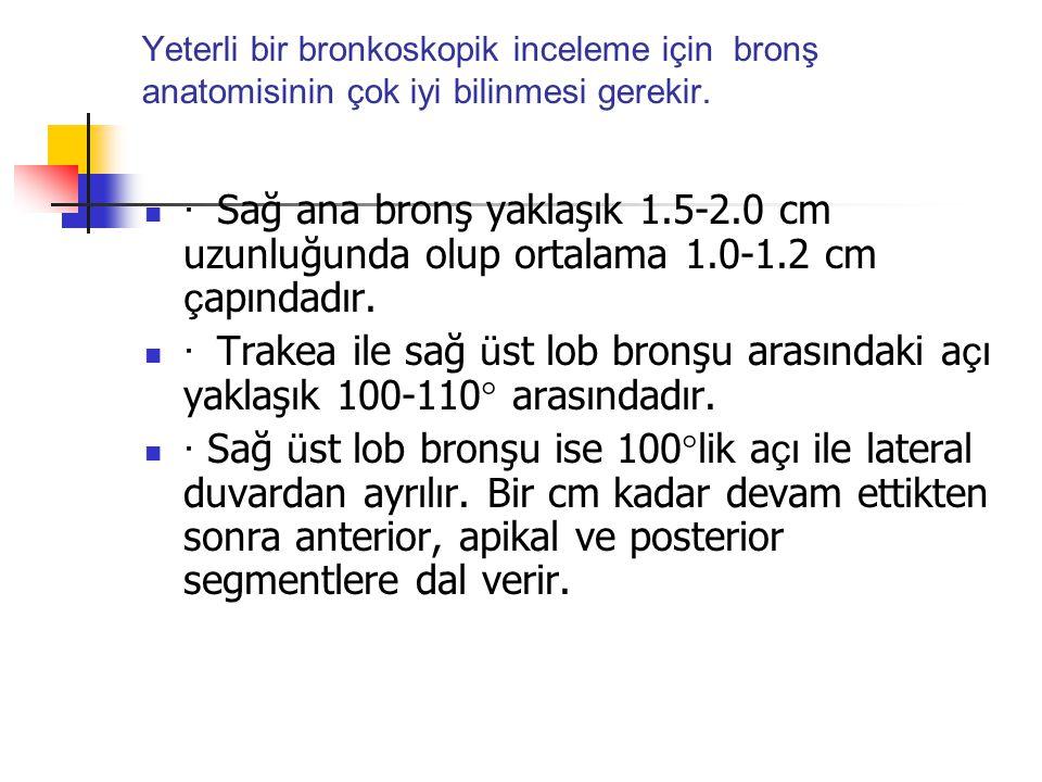 Yeterli bir bronkoskopik inceleme için bronş anatomisinin çok iyi bilinmesi gerekir.
