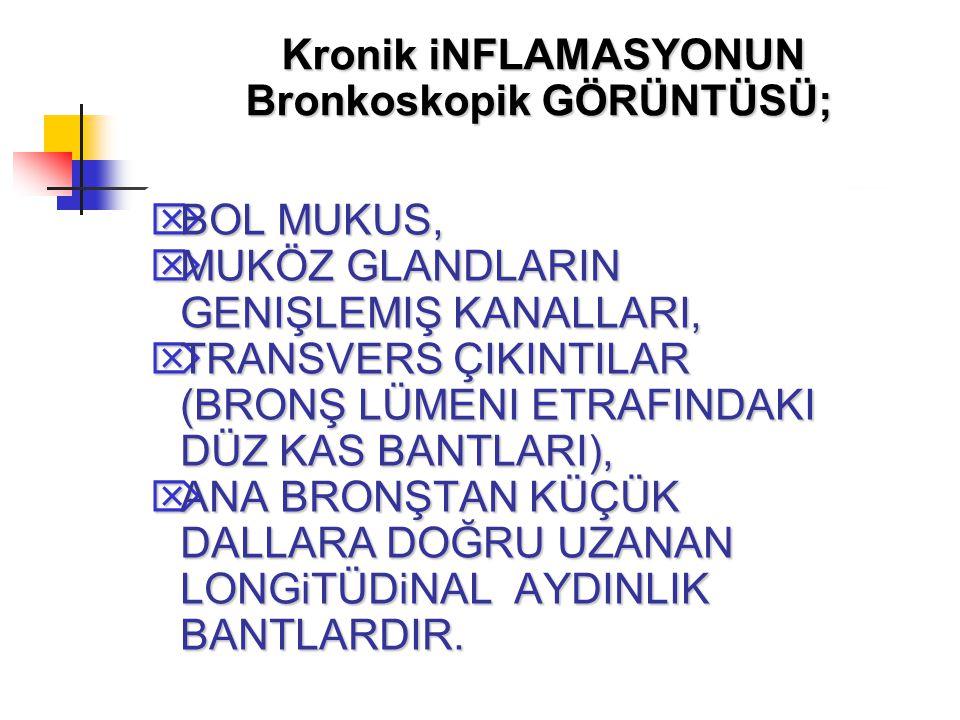 Bronkoskopik GÖRÜNTÜSÜ;