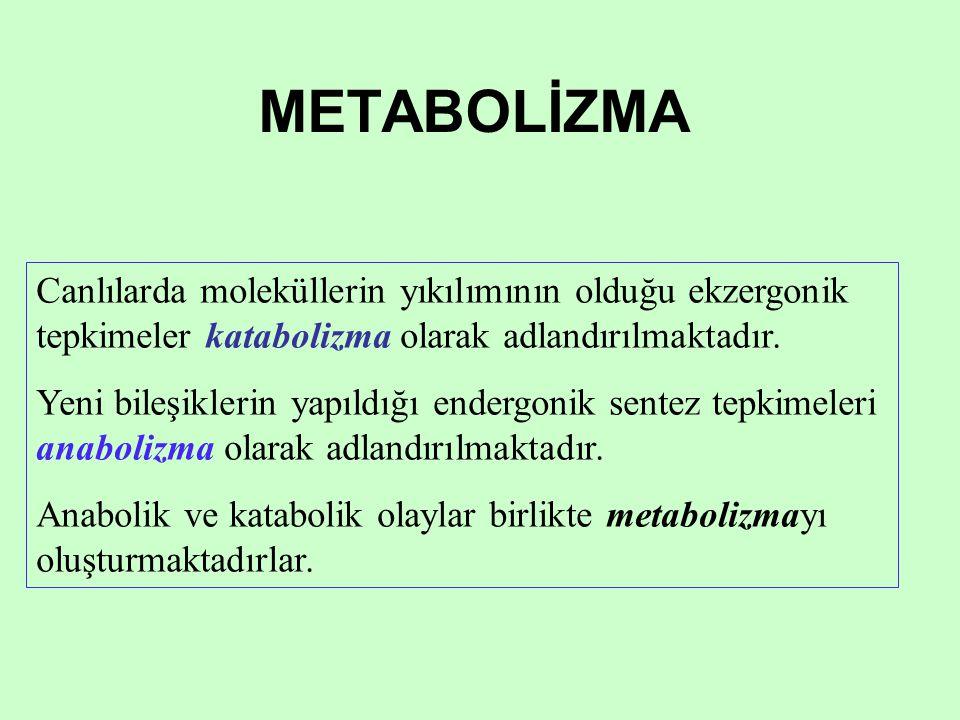 METABOLİZMA Canlılarda moleküllerin yıkılımının olduğu ekzergonik tepkimeler katabolizma olarak adlandırılmaktadır.