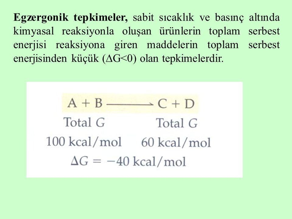 Egzergonik tepkimeler, sabit sıcaklık ve basınç altında kimyasal reaksiyonla oluşan ürünlerin toplam serbest enerjisi reaksiyona giren maddelerin toplam serbest enerjisinden küçük (G<0) olan tepkimelerdir.