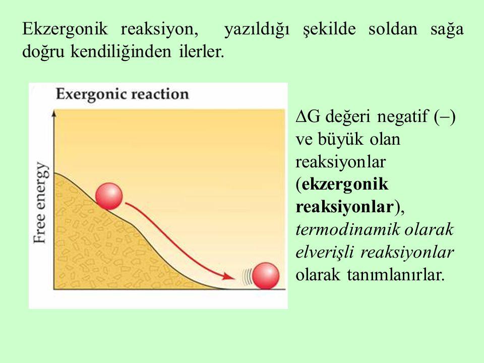 Ekzergonik reaksiyon, yazıldığı şekilde soldan sağa doğru kendiliğinden ilerler.