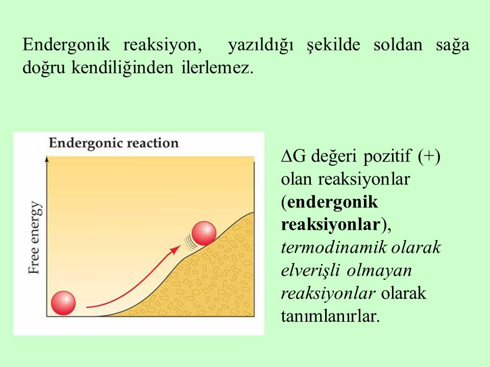 Endergonik reaksiyon, yazıldığı şekilde soldan sağa doğru kendiliğinden ilerlemez.