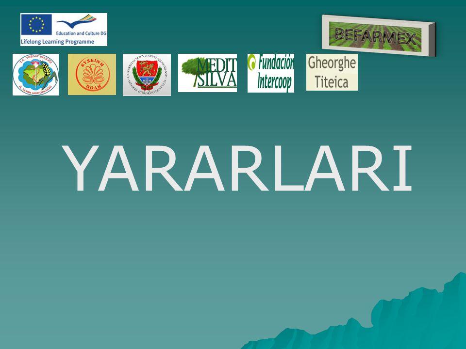 YARARLARI