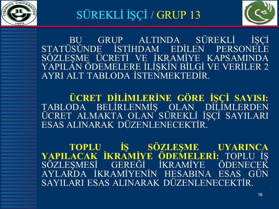 SÜREKLİ İŞÇİ / GRUP 13