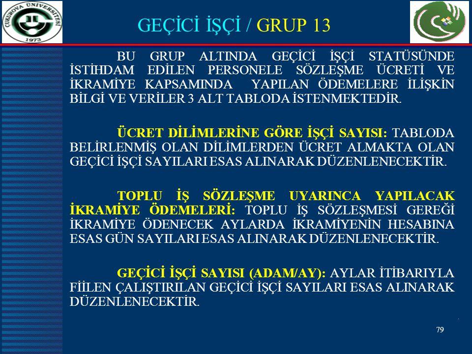 GEÇİCİ İŞÇİ / GRUP 13